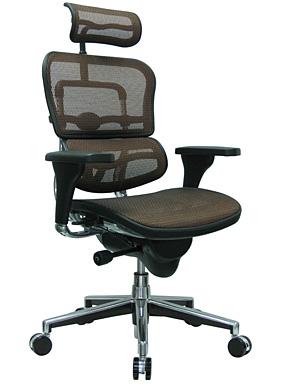Ergonomic multi-function high back mesh chair w/ head rest